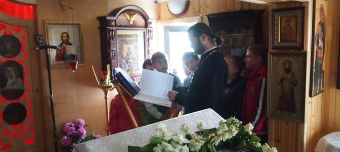 Святитель Лука Крымский, моли Бога о нас!